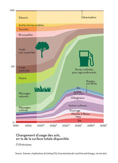 "The expected evolution of land use by agriculture, from now to the end of the 21th century. With the worrying growth of biofuels, threatening forests and edible crops. Infographics created by Hugues Piolet for ""L'Alimentation en otage"", a book by famous environmental activist José Bové."