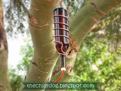 Tutorial: How to Make a Wine Bottle Hummingbird Feeder - All you need is an empty glass bottle, copper wire and a hummingbird feeder tube to create a sweet treat for the hummingbirds in your neighborhood.