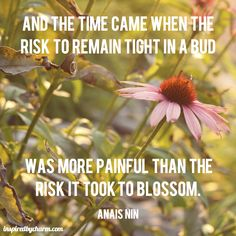 And the time came when the risk to remain tight in a bud was more painful than the risk it took to blossom.