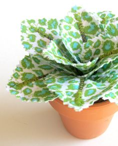 This is brilliant! A beautiful plant that I CAN'T kill... or won't kill me...with mold...