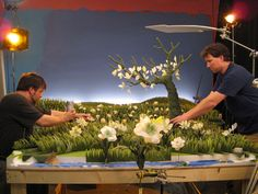 Stop motion forest set.