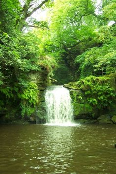 Beck Hole - Thomason Foss Waterfall this looks so peaceful and calm. Yorkshire England, Yorkshire Dales, North Yorkshire, Beautiful World, Beautiful Places, Beautiful Pictures, Nature Verte, Seen, Beautiful Waterfalls