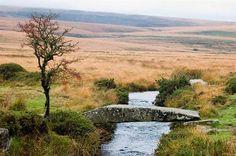 Dartmoor.. #England