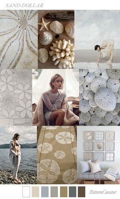 SAND DOLLAR by PatternCurator