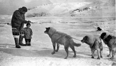 Famous Knud Rasmussen and greenlandic dogs