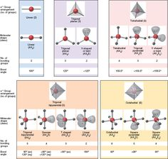 VSEPR Theory: summary of common molecular shapes with two to six electron groups Chemistry Help, High School Chemistry, Chemistry Lessons, Teaching Chemistry, Science Chemistry, Organic Chemistry, Science Education, Molecular Shapes, Molecular Geometry