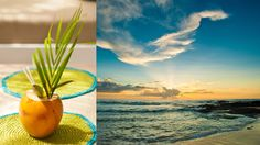 Costa Rica Luxury Beach Boutique Hotels, Villas & Resorts | Cala Luna Tamarindo Hotel & Resort