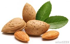 Almonds were considered a divine food during the Middle Ages. The symbolism was based on Numbers 17:1-8 describing the miracle of Aaron's rod bringing forth buds and almonds as a sign of God's divine favor.
