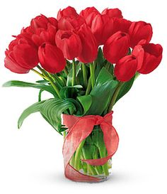 Flowers Delivery in Dubai Stems of 20 Red Tulips by sending This Red Tulips express your love and care. Fast same day delivery is Available.Order Now