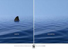 """WWF """"La parte sinistra è spaventosa, ma la destra è anche peggio."""""""
