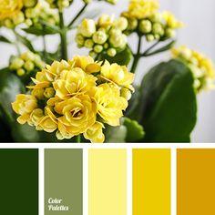 Color Palette #2872