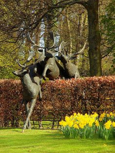 Sculpture of 3 Deer leaping over the hedge, at the southwestern corner of Dundee's Technology Park.