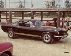 Vintage ~ Shelby Mustang GT