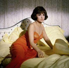 Gina-Lollobrigida-8x10-Photo-Sexy-Classic-Vintage-Celebrity-Actress-Print-41016