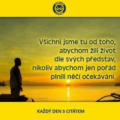 Story Quotes, Motto, True Stories, Karma, Wisdom, Positivity, Motivation, Life, Psychology