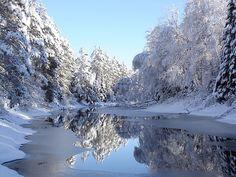 Northern Minnesota Winter Beauty                                                                                                                                                                                 More