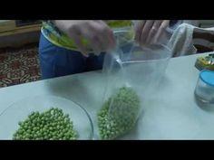 Cosecha y conservación de los guisantes (huerto facil)