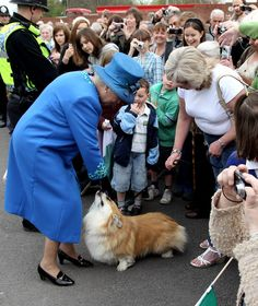 Even when it's not her own, Queen Elizabeth II can't resist a corgi called Spencer as she arrives at a Welsh train station in 2010.(Chris Jackson/Getty Images) (I wonder what the person in the forground (bottom right) is taking a photo of!)