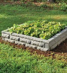Garden Wizard Raised Bed Self-Watering Garden Wicking Beds, Self Watering Containers, Garden Boxes, Go Green, Raised Beds, Growing Plants, Mother Earth, Garden Landscaping, Outdoor Gardens