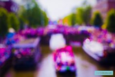 The Prinsengracht in Amsterdam during the Gay Pride Canal Parade 2015 Gay Pride, Amsterdam, Colour Light, The Originals, City Life, Blur, Original Art, Pictures, Urban