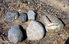 Pleistoceno. Amplia Uno