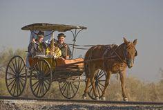 carruajes antiguos en argentina - .