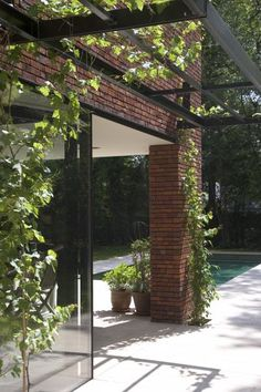 Hasselt #6 Backyard & pool