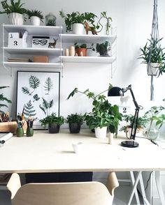 Plantas incentivam a inspiração e a criatividade, por isso, nada melhor do que colocar alguns vasinhos no home office. #plantas #vasos #homeoffice #escritório
