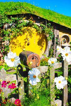 Hobbit House - Hobbiton, New Zealand  #lotr #lordoftherings
