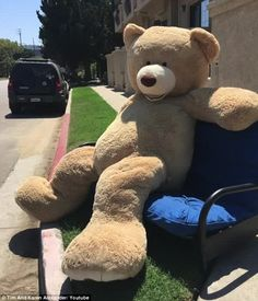 Now that's a big bear: The twins Allen and Brandon wanted $50 for their Big Bear…