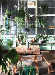 38 Stunning Urban Jungle Room Decor That Will Make Your Home More Cozy - Decor Renewal Exterior Design, Interior And Exterior, Jungle Room, Interior Garden, Decoration, Indoor Plants, Planting Flowers, Beautiful Homes, Living Spaces