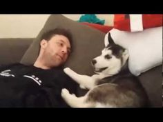 Comparte con tus amigosCuando tienes un perro como mascota, los momentos que pasan juntos pueden tener incluso un giro diferente al de una atmósfera amable. Una discusión contradictoria puede transformarse en una situación de diversión.
