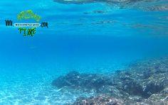 fuerteventura-snorkeling