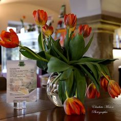 Frühlingsgrüße wenn draußen trüb ist! Super, Table Decorations, Furniture, Home Decor, Cut Flowers, Homes, Deco, Nice Asses, Decoration Home