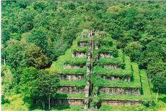 Forêt de Hoh   Temple pyramidale de Koh Ker