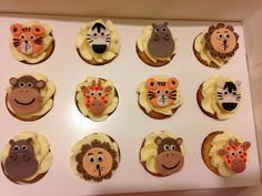 Zoo mini cupcakes