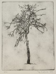 """I want to portray you not with lapis or gold, but with colors made of apple bark.I want, then, simply to say the names of things."""" I, 60 Drypoint Etching, Apple Tree, Etchings, Love Poems, Printmaking, Names, Tattoo, Colors, Gold"""
