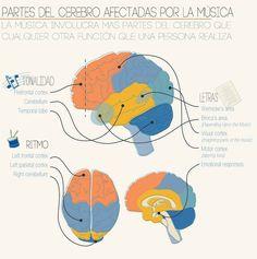 SAIKU ALTERNATIVO: Efectos de la música en el Cerebro de los niños