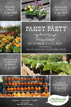 Pansy Party. Enjoy the season's must-haves dirt cheap!