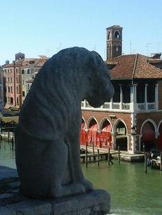 Leone originale all'esterno del balcone,vista canal grande nel Palazzo  Ca'Doro a Venezia