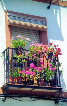 Balcón en Montoro, Córdoba