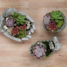 Coete Garden Hands
