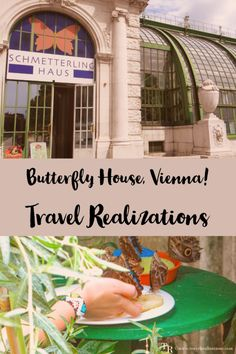 """I was lucky to get an opportunity to visit """"The Butterfly House"""" in Vienna Austria recently. In one word the experience was delightful. Visit Austria, Austria Travel, Vienna Austria, Europe Travel Guide, Travel Guides, Travel Destinations, Backpacking Europe, Travel Plan, European Destination"""