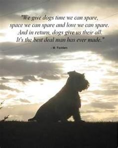 famous sayings - dogs - Bing Images