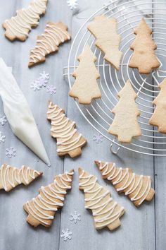 22 ideas for cookies recipes gluten free sugar Sugar Cookies From Scratch, Cookie Recipes From Scratch, Easy Christmas Cookie Recipes, Gluten Free Cookie Recipes, Best Christmas Cookies, Best Cookie Recipes, Christmas Time, Christmas Biscuits, Christmas Cakes