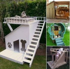 What Is Your Dog Personality? Dog Bunk Beds, Puppy Beds, Loft Beds, Extra Large Dog House, Pet Helpers, Wooden Dog House, Doggy House, Cool Dog Houses, Pet Houses