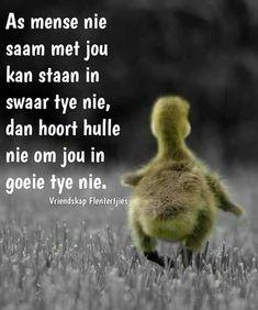 Afrikaans Quotes, Tart, Qoutes, Inspiration, Quotations, Biblical Inspiration, Quotes, Pie, Tarts