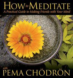 Ziji - How to Meditate with Pema Chödrön CD, $29.95 (http://www.ziji.com/products/jewelry-gifts-wearables/gifts-for-him/how-to-meditate-with-pema-chodron-cd/)
