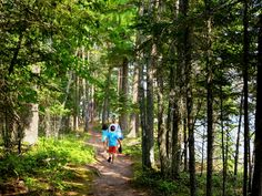 Check out some of Michigan's trails this weekend – A Healthier Michigan