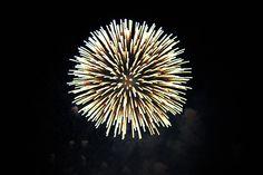 fireworks Canada Day Fireworks, Chandelier, Ceiling Lights, Home Decor, Candelabra, Decoration Home, Room Decor, Chandeliers, Outdoor Ceiling Lights